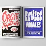 Pornographisme – Le livre